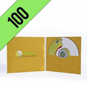 100 DVD-R DIGIFILE CUSTOMIZED